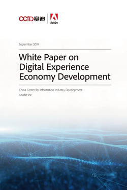 White Paper on Digital Experience Economy Development